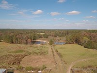 Buena Vista Farm : Buena Vista : Marion County : Georgia