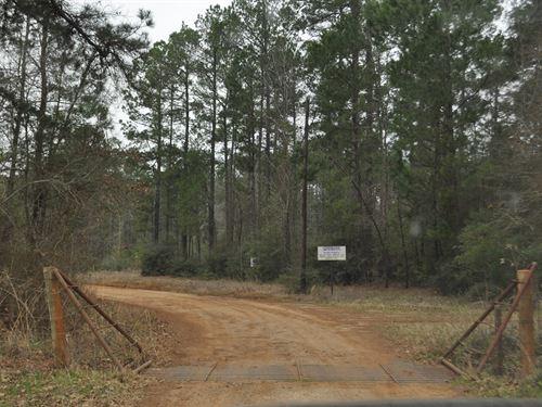 311 Acres Tract 4173 : Carthage : Panola County : Texas