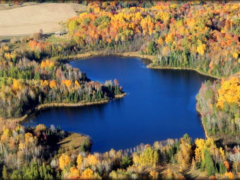 Bullhead Lake Beauty 168365 : Medford : Taylor County : Wisconsin