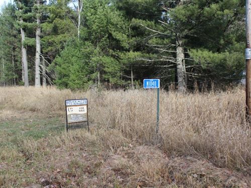 80 Acre Parcel With Creek : Neillsville : Clark County : Wisconsin