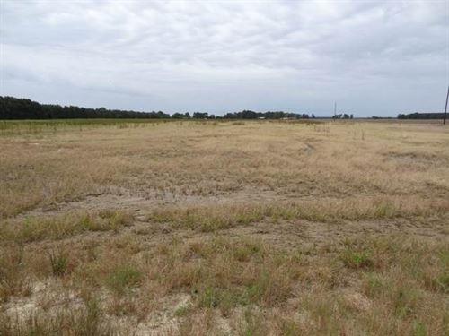 New Price, 77.15 Acres of Farm : McCrory : Woodruff County : Arkansas