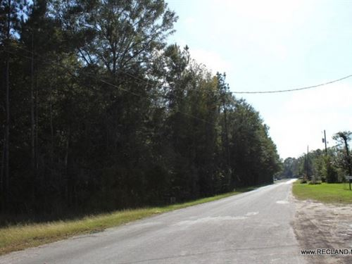13.5 Ac - Wooded Tract For Commerci : Jasper : Texas