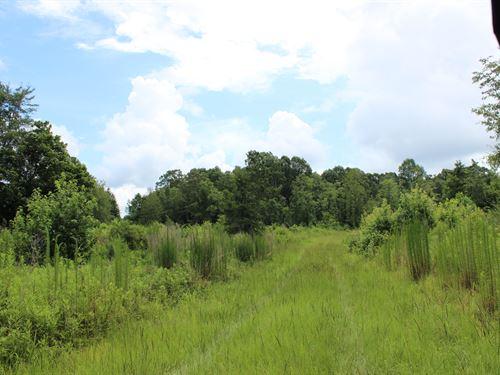 Recreational Property Or Homesite : Covington : Newton County : Georgia