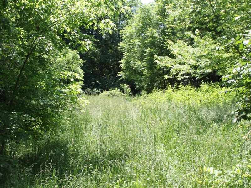Country Home Site With A Small Pond Farm For Sale St