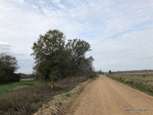 34 Ac - Rural Tract With Lots Of Op : Jigger : Franklin Parish : Louisiana