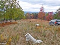 Privacy And Seclusion : Moorefield : Hardy County : West Virginia