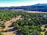 Wooded Homesite Near Trinidad Lake : Trinidad : Las Animas County : Colorado