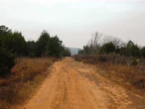 82.3 Acre Deer And Turkey Hunting : Judsonia : White County : Arkansas