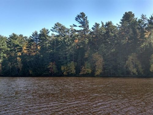Virgin Land, Pristine Lake : Eagle River : Oneida County : Wisconsin