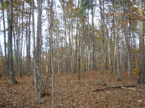 Secluded And Remote : Howardsville : Buckingham County : Virginia