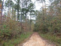 Great Hunting : Sparta : Hancock County : Georgia