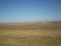 610 Ac M/L Tillable Farmland : Ionia : Benton County : Missouri
