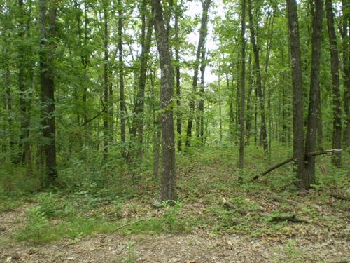 Recreational Country Home Site : Stover : Morgan County : Missouri