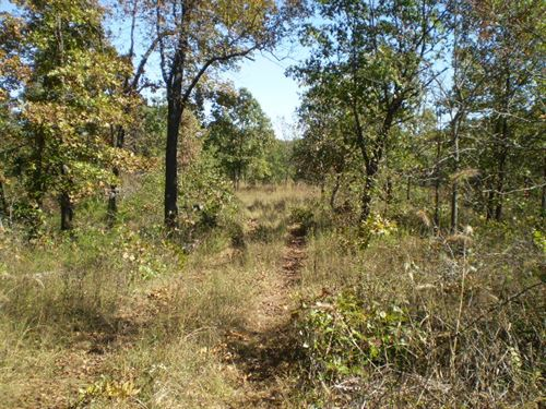 Great Hunting And Recreational Site : Nevada : Vernon County : Missouri
