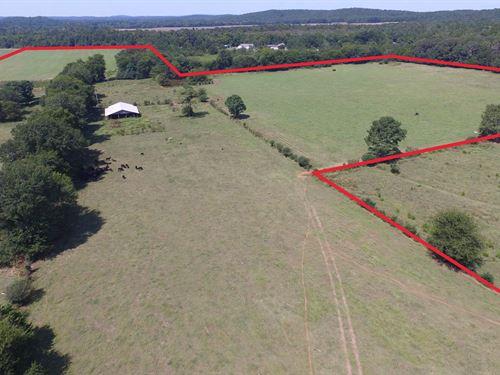 51+/- Acre Farm Tract - Pond & Barn : Munford : Talladega County : Alabama