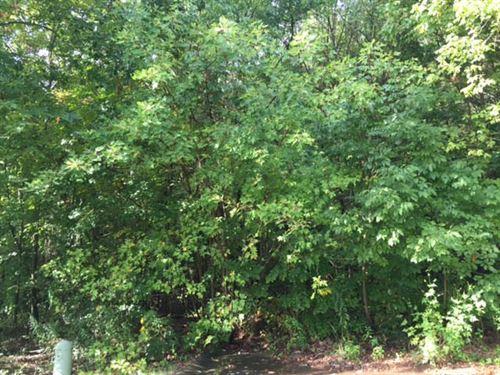54.67 +/- Wooded Acres, Bartow Co. : Cartersville : Bartow County : Georgia