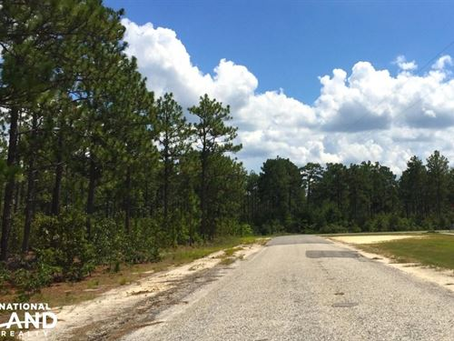 Accessible Us-1 Commercial Acreage : Lugoff : Kershaw County : South Carolina