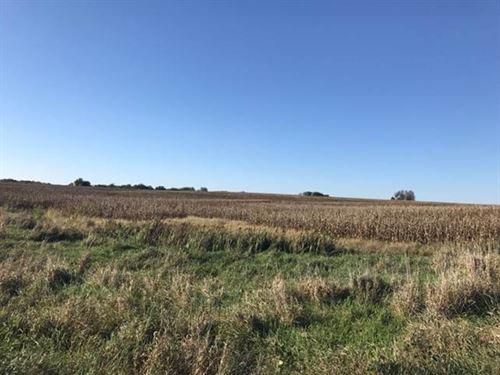 Tillable And Hunting Farm Nw Mo : Polk : Nodaway County : Missouri