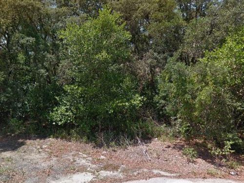 Highlands County, Fl $19,999 Neg : Sebring : Highlands County : Florida
