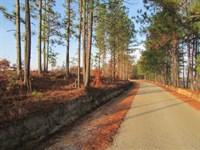 McKittrick 139 Tract : Camden : Kershaw County : South Carolina