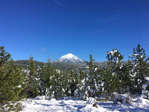 Jack Springs : Eagle Point : Jackson County : Oregon