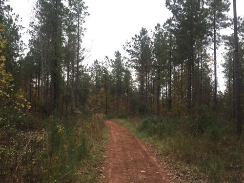 252.80 Acres in Mcconnells, SC : McConnells : York County : South Carolina