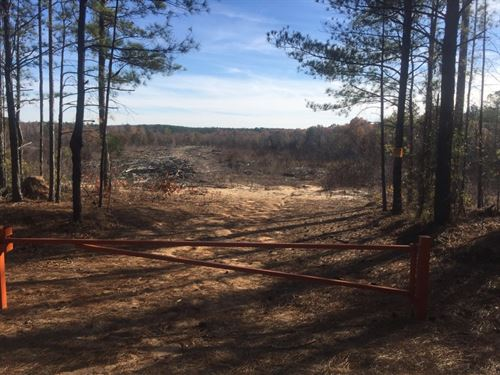 230 Acres in Cassatt, SC : Cassatt : Kershaw County : South Carolina