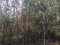 Long Chapel : Jonesville : Union County : South Carolina