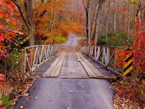 Horse Cove Tract : Canton : Haywood County : North Carolina