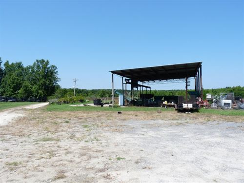 Millwood Nursery : Kingstree : Williamsburg County : South Carolina