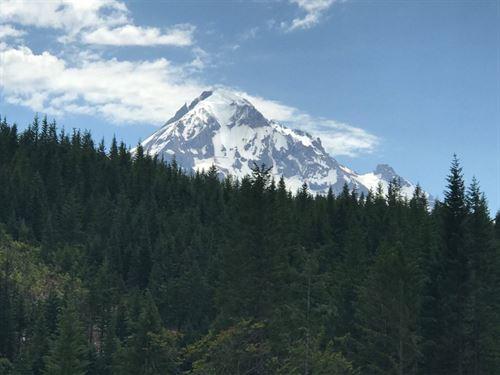 Hood Uplands : Zigzag : Hood River County : Oregon