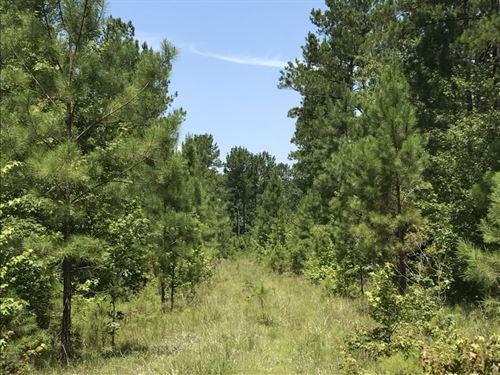 The Pole Yard Tract : Bowman : Orangeburg County : South Carolina