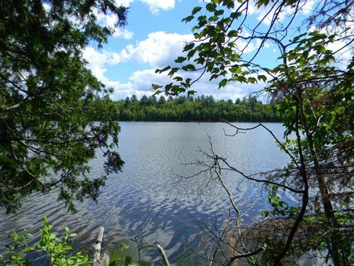 Shank Lake 90A Road : Amasa : Iron County : Michigan