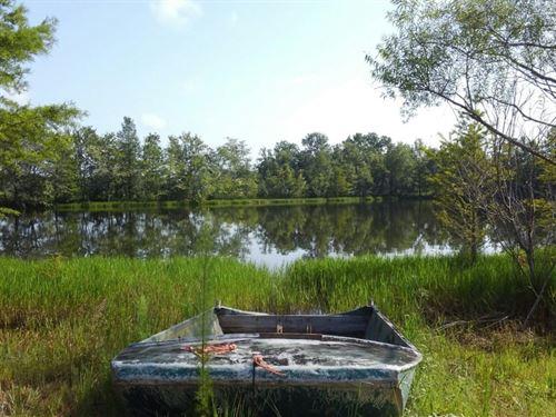 Paulk : Bonifay : Holmes County : Florida