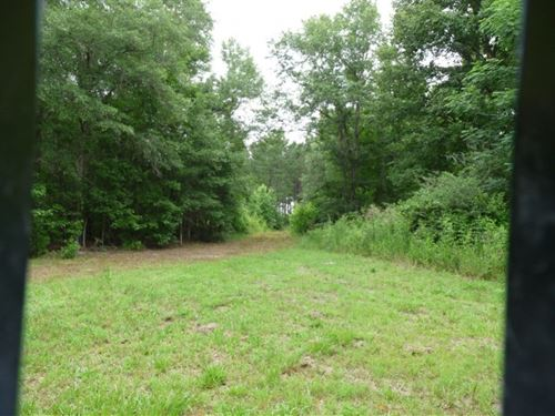 70 Acres in Orangeburg, SC : Orangeburg : South Carolina