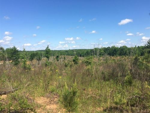 Pitts Chapel West : Opelika : Lee County : Alabama