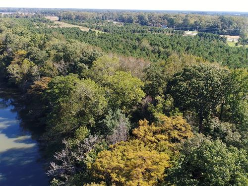 Roanoke River Tract : Jamesville : Martin County : North Carolina