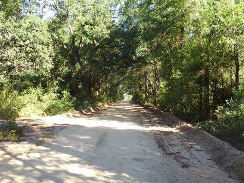 Oscar Road : Marianna : Jackson County : Florida