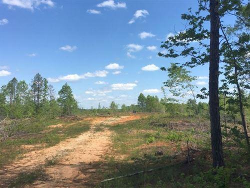 Mechanicsville East : Opelika : Lee County : Alabama