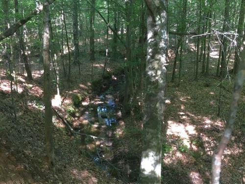 Salem Woods : Salem : Lee County : Alabama