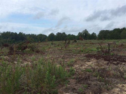 Horselot Branch : Packards Bend : Russell County : Alabama