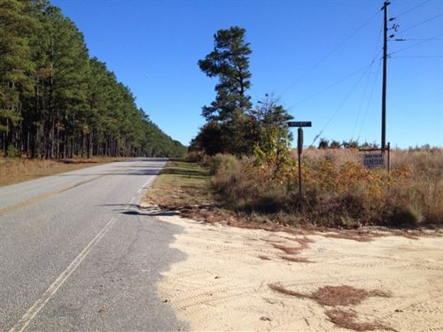 40 Acres in Chesterfield, SC : Chesterfield : South Carolina