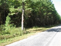 Anderson Road Tract 9862 : Sussex : Sussex County : Virginia
