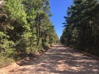 Evans Road : Vernon : Washington County : Florida