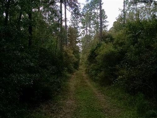 Smith 80 : Alford : Jackson County : Florida