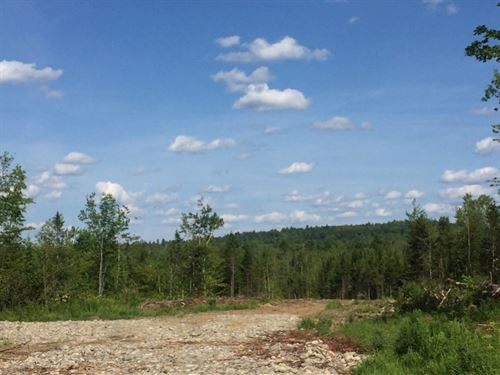 Ames Tract Parsons Landing : Dover-Foxcroft : Piscataquis County : Maine