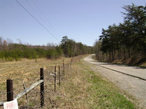 Daus Mountain Tract : Dunlap : Grundy County : Tennessee