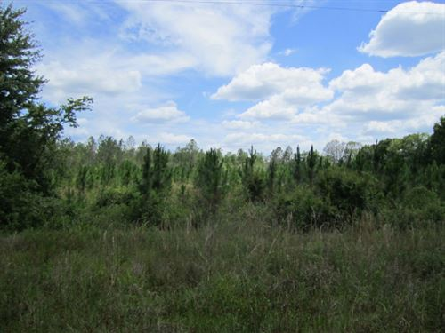 Comp 145A-2-2 South Raiford : Raiford : Union County : Florida