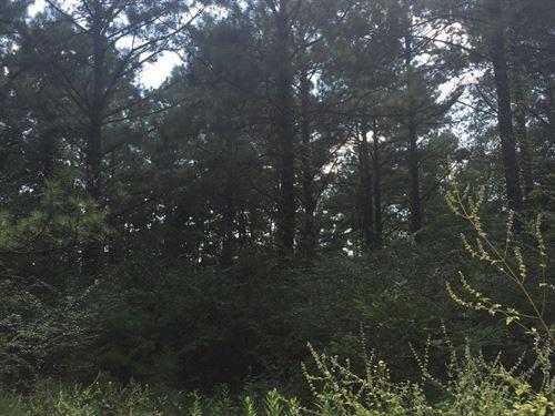 Mo02, Parcel 2 : Monroeville : Monroe County : Alabama