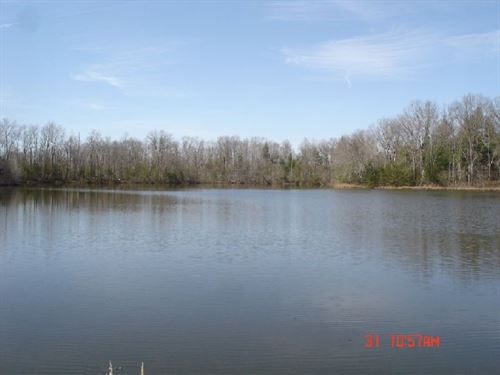 1103 : Deer Lodge : Morgan County : Tennessee